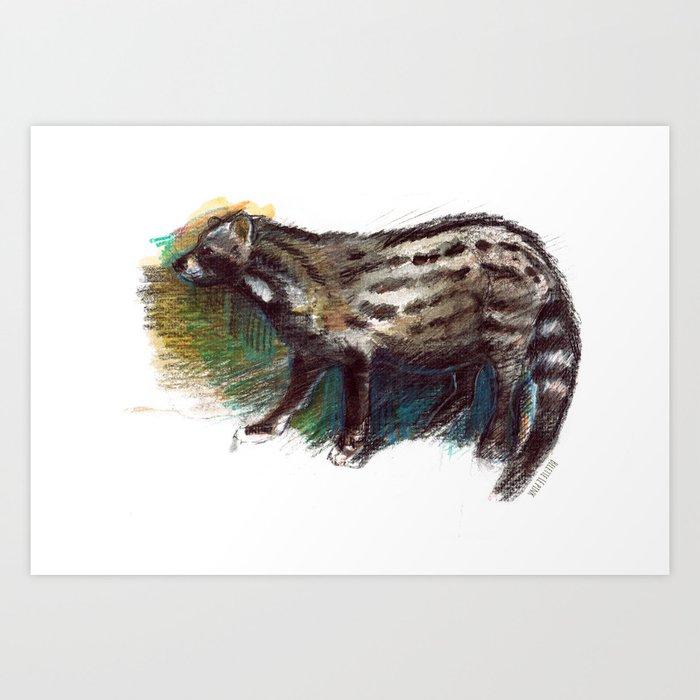 Totem Viverra zibetha Art Print