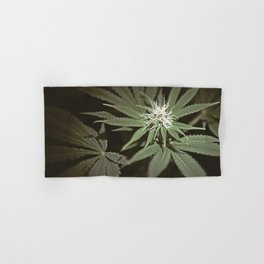MarryJane Hand & Bath Towel