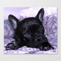 Purple Frenchie Canvas Print