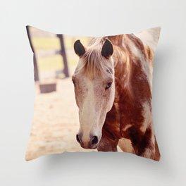Please Pet Me Throw Pillow