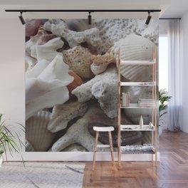 See Sea Shells Wall Mural