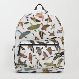 Bird, Birds, Birds Backpack