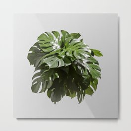 Tropical leaves monstera Metal Print
