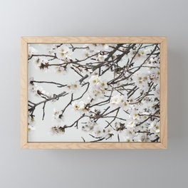 Emerging Spring Framed Mini Art Print
