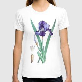 Vintage Botanical Purple Iris Flower T-shirt