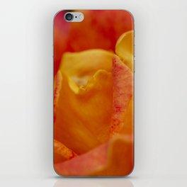 macro rose iPhone Skin