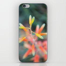 Orange buds iPhone Skin