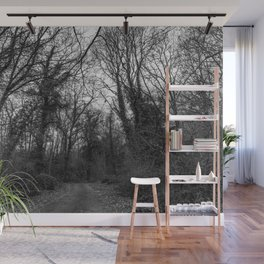 Monochromatic forest path Wall Mural