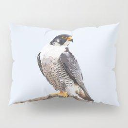 Majestic: Peregrine Falcon Pillow Sham