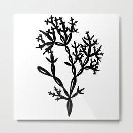Seaweed 01 Metal Print