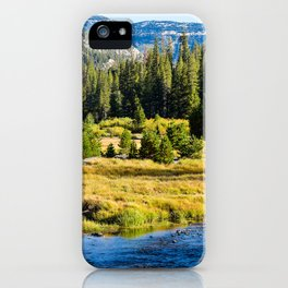 Landscape at Mammoth mountain in CA. iPhone Case
