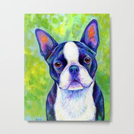 Colorful Boston Terrier Dog Metal Print