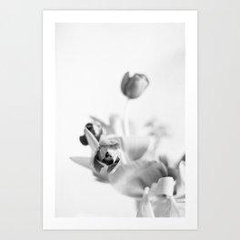 Tulips on film Art Print