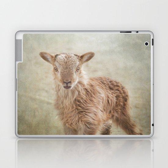 Baby Soay Sheep Laptop & iPad Skin