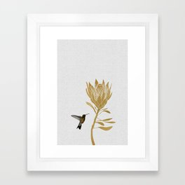 Hummingbird & Flower I Framed Art Print