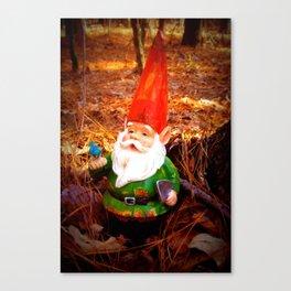 Mr. Gnome Canvas Print
