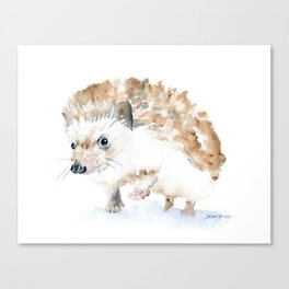 Hedgehog Watercolor Canvas Print