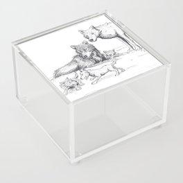 Happy Wolf Family Acrylic Box