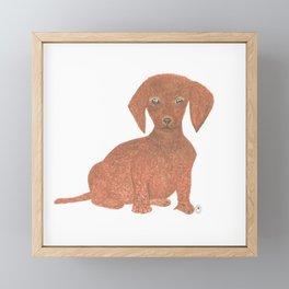 Daffodil the Dachshund Puppy Framed Mini Art Print