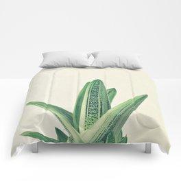 Cactus III Comforters