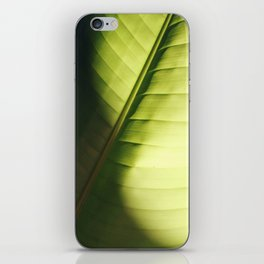 leaf macro iPhone Skin