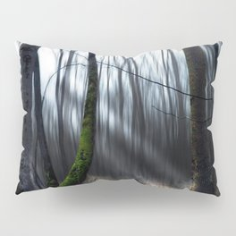 Searching the light Pillow Sham