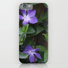 Perriwinkle iPhone 6s Slim Case