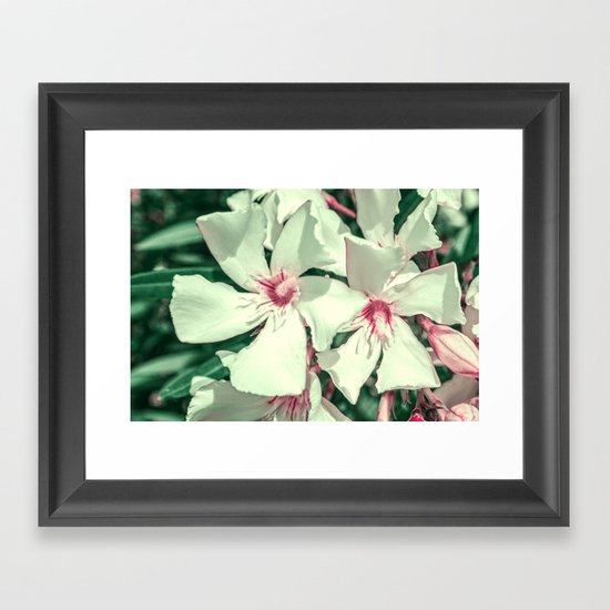 Summer Fresh Framed Art Print
