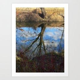 Tree in the water? Art Print