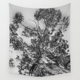 The old eucalyptus tree Wall Tapestry