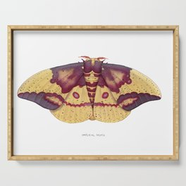 Imperial Moth (Eacles imperialis) Serving Tray