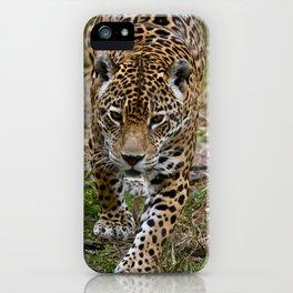 Prowling Jaguar iPhone Case