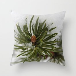 Snow 2 Throw Pillow