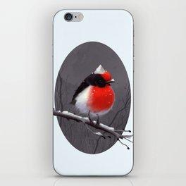 Bird in the snow iPhone Skin
