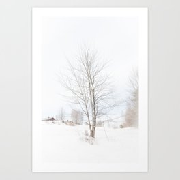 Tree // Winter Art Print