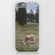 The Reality iPhone 6s Slim Case