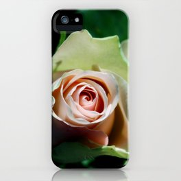 Whispering secrets iPhone Case