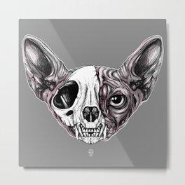 Shynx Half Skull Metal Print