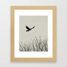 Aloft - Graphic Birds Series, Plain - Modern Home Decor Framed Art Print