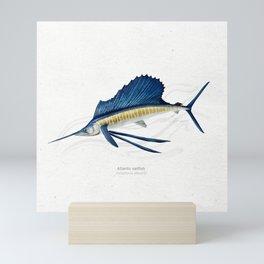 Atlantic sailfish fish art print Mini Art Print