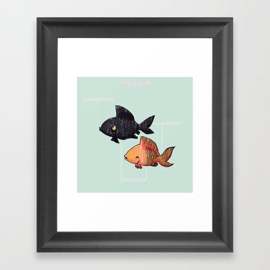 Anatomy Of A Goldfish Framed Art Print