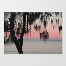 The Sunrise Weeping Tree Canvas Print