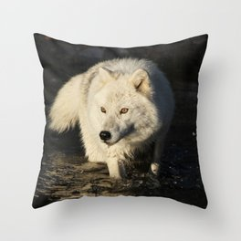 The lone sentinel Throw Pillow