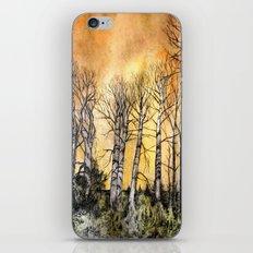 Orange Glow  iPhone & iPod Skin