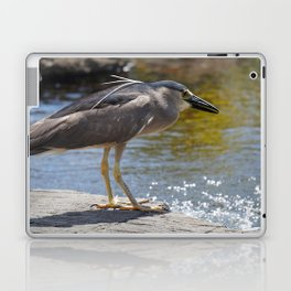 Blue Herron Posing Laptop & iPad Skin