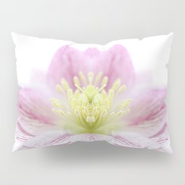 Hellebore Flower Symmetry Pillow Sham