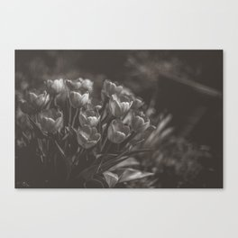 Swaying to the music Canvas Print