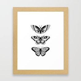 Moths Framed Art Print