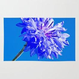 Blue fresh cornflower on the blue background Rug