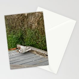 The courious cat Stationery Cards